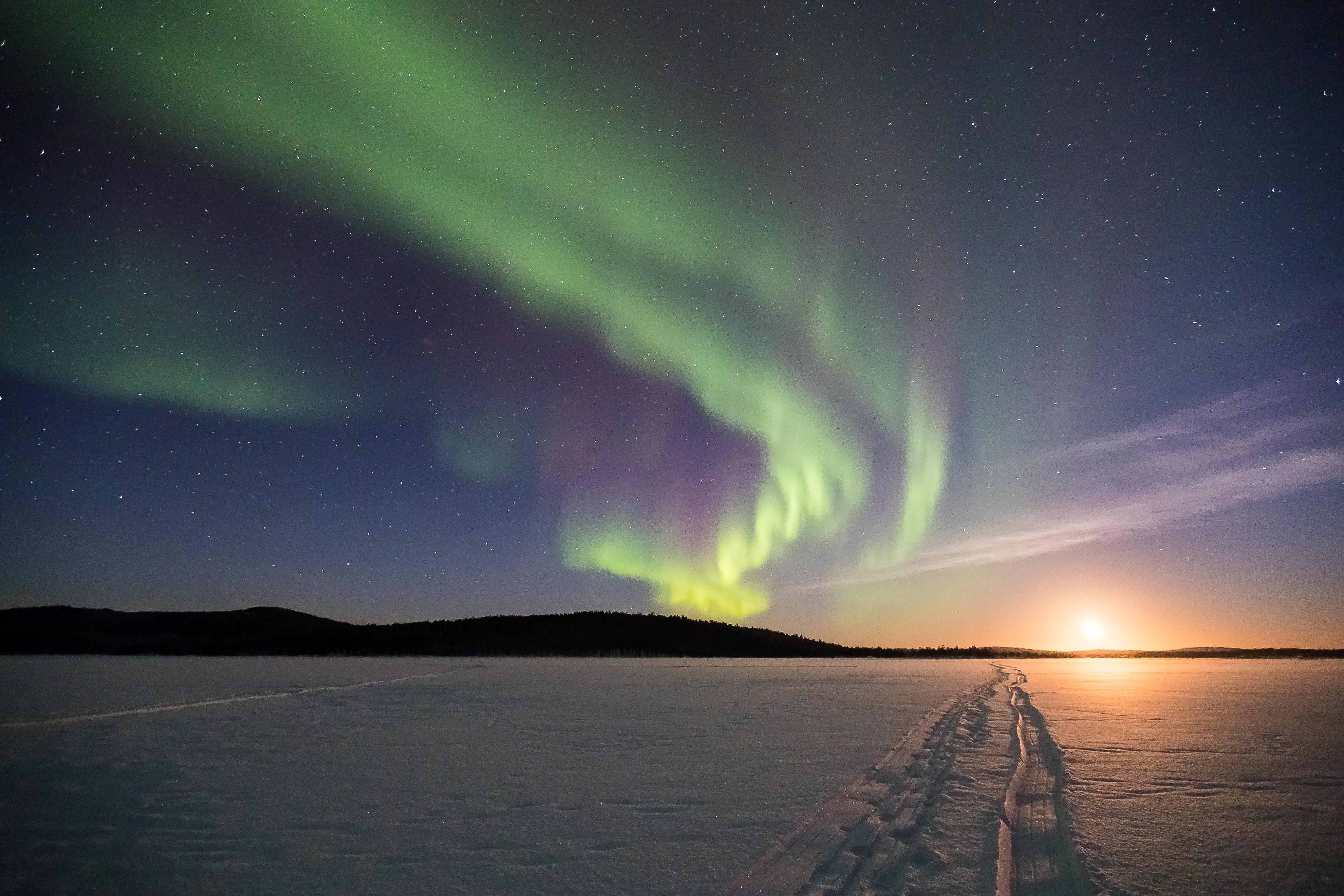 Northern-lights-winter_Rayann-Elzein_Lapland-Material-Bank
